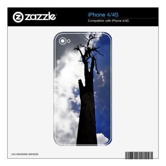 Old dead tree against dark cloudy sky decals for iPhone 4
