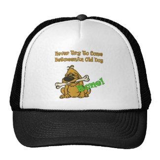 Old Dog And Bone Mesh Hat