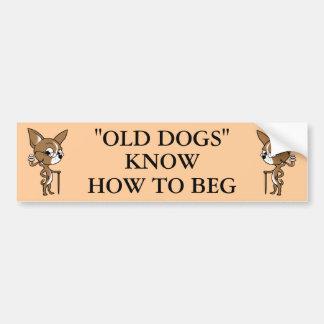 """OLD DOG"" Logo with Sayin' Car Bumper Sticker"