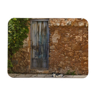 Old door and resting cat magnet