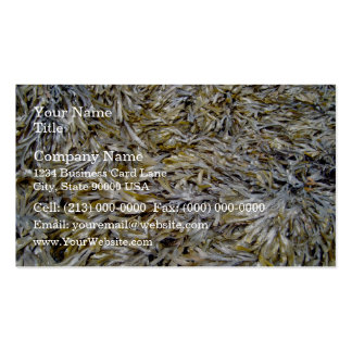 Old Dry Leaves Texture Business Card