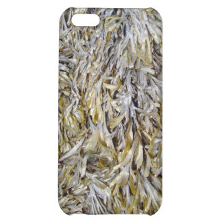 Old Dry Leaves Texture iPhone 5C Case