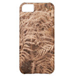 Old Dry Yellow Brown Fern - Foliage Photography iPhone 5C Case