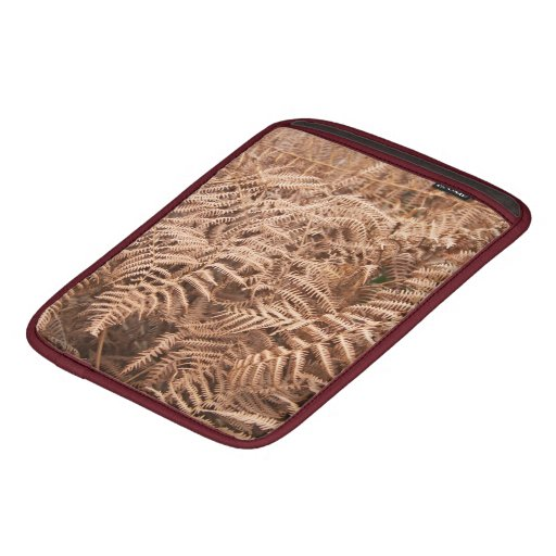Old Dry Yellow Brown Fern - Foliage Photography Sleeves For iPads