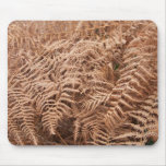 Old Dry Yellow Brown Fern - Foliage Photography Mouse Pad