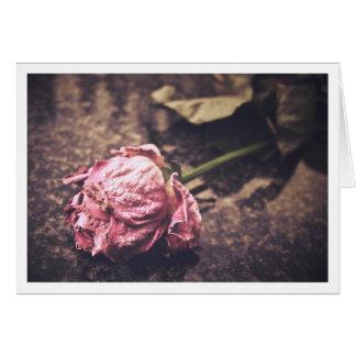 Old dryed vintage pink rose macro shot photo card