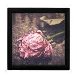 Old dryed vintage pink rose macro shot photo trinket boxes