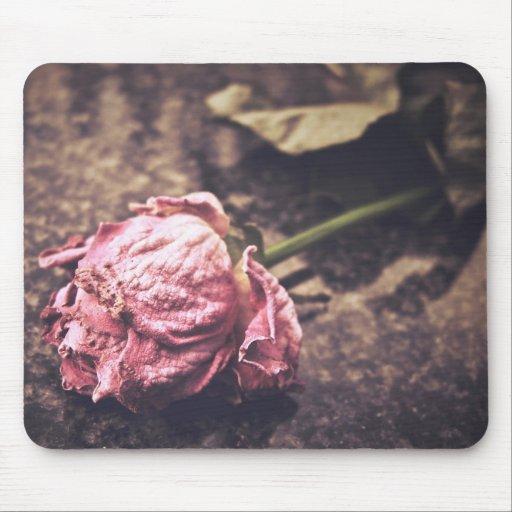 Old dryed vintage pink rose macro shot photo mouse pad