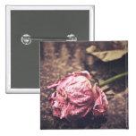 Old dryed vintage pink rose macro shot photo pins