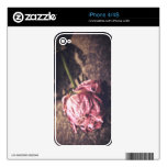Old dryed vintage pink rose macro shot photo skin for the iPhone 4S
