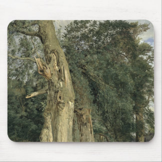 Old elms in Prater, 1831 Mouse Pad