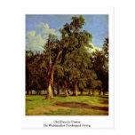 Old Elms In Prater By Waldmuller Ferdinand Georg Postcard