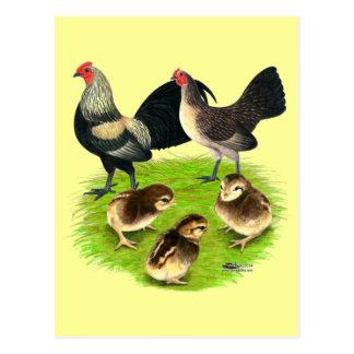 Old English Bantam Brassy Back Family Postcard