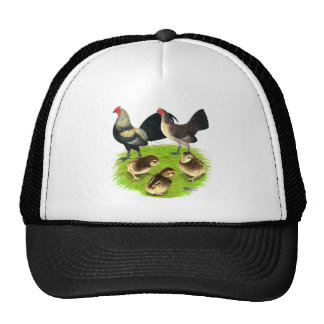 Old English Bantam Brassy Back Family Trucker Hat