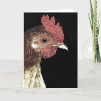 Old English Bantam Rooster card