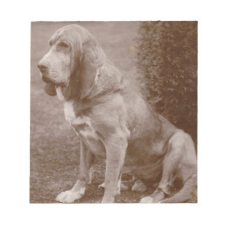 Old English Bloodhound Note Pads