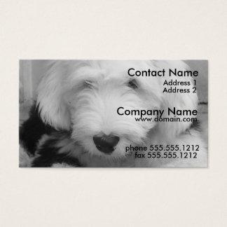 Old English Sheep Dog Business Card
