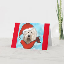 Old English Sheep Dog Holiday Card