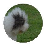 old-english-sheepdog-10.jpg poker chips