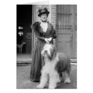 Old English Sheepdog, 1915 Card