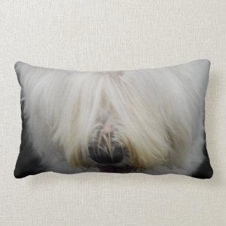 old-english-sheepdog-6.jpg cojines