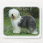 Old English Sheepdog 9F054D-17 Mouse Pads