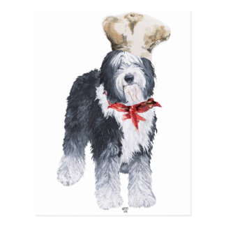 Old English Sheepdog Chef of Love Postcard