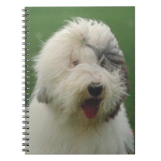 Old English Sheepdog Dog Notebook