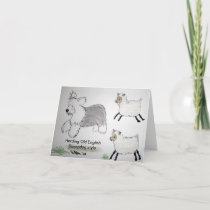Old English Sheepdog Herding notecards