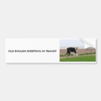 OLD ENGLISH SHEEPDOG IN TRANSIT sticker Car Bumper Sticker