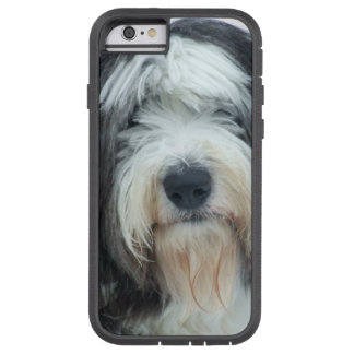 Old English Sheepdog iPhone 6 Case