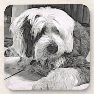 Old English Sheepdog Looking up Drink Coaster