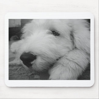 Old English Sheepdog Mouse Pad