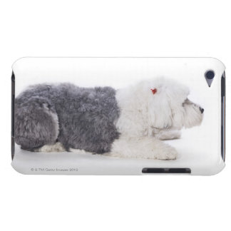 Old English Sheepdog on white background Barely There iPod Covers