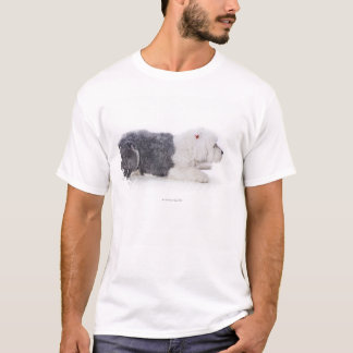 Old English Sheepdog on white background T-Shirt
