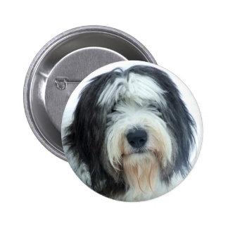 Old English Sheepdog Pinback Button