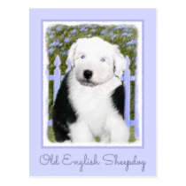 Old English Sheepdog Puppy Painting - Dog Art Postcard