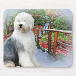 Old English Sheepdog Spring Day Mouse Pad