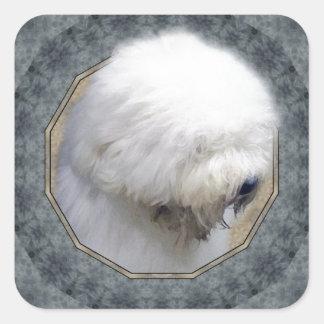 Old English Sheepdog Square Sticker