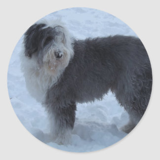 Old English Sheepdog Stickers - Snow Dog!