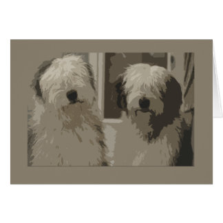 Old English Sheepdogs Greeting Cards