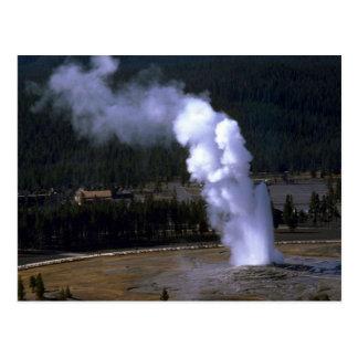 Old Faithful Geyser, Yellowstone National Park Postcard