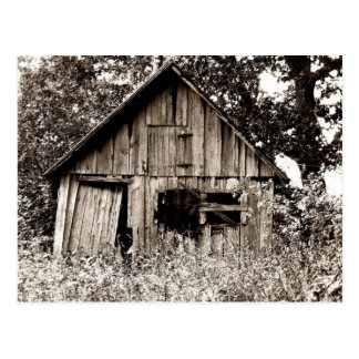 Old Farm Shed Postcard