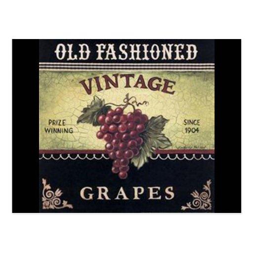 Old Fashion Vintage Grapes, Purple and Black Wine Postcard