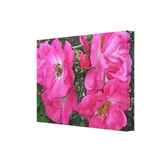 Old Fashioned Climbing Pink Roses - Enhanced Canvas Print