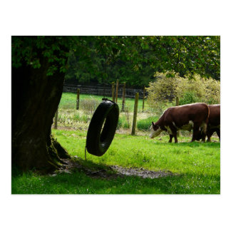 Old Fashioned Country Tire Swing Postcard