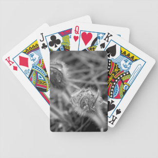 Old Fashioned Flowers Bicycle Playing Cards