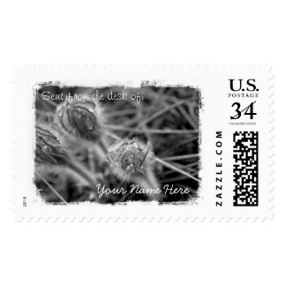 Old Fashioned Flowers Postage
