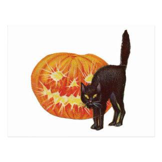 Old Fashioned Halloween Black Cat & Jack-O-Lantern Postcard