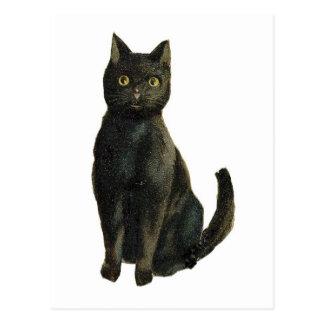 Old Fashioned Halloween Black Cat Postcard